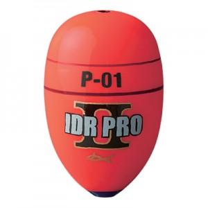 idr-pro2-1