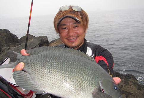 tanakaka485