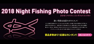 kizakura_night_fishing_0810_2