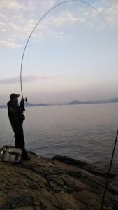 釣り始めはネリエで食わせました井上③
